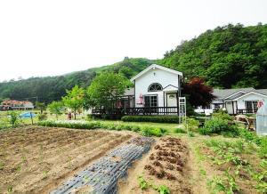 Pilgrim Pension, Holiday homes  Pyeongchang  - big - 32