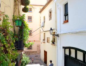Modern loft in the historical town, Ferienwohnungen  Tossa de Mar - big - 4