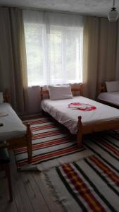 Guest House Evredika