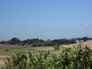 Rancho los transparentes, Dovolenkové domy  Vejer de la Frontera - big - 7
