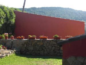 Rancho los transparentes, Dovolenkové domy  Vejer de la Frontera - big - 13