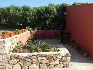 Rancho los transparentes, Dovolenkové domy  Vejer de la Frontera - big - 45