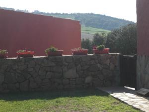 Rancho los transparentes, Dovolenkové domy  Vejer de la Frontera - big - 52