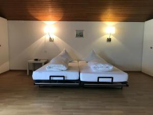 Hotel Sardona, Hotel  Elm - big - 14