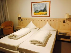 Hotel Sardona, Hotel  Elm - big - 30
