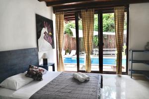 Residencia Gorila, Aparthotels  Tulum - big - 12