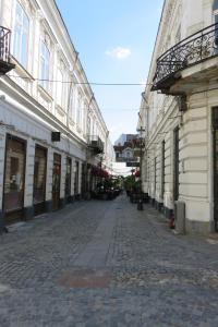 GLAMOROUS 2 ROOM APARTMENT, Апартаменты  Бухарест - big - 14
