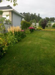 Riekkalansaari Cottage, Vidiecke domy  Sortavala - big - 27
