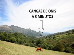 obrázek - Casa Supereda