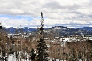 Dillon Wildernest Resort by Rocky Mountain Resort Management