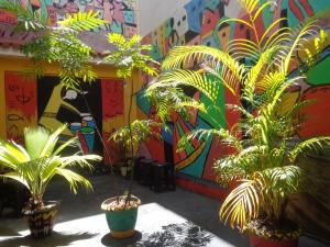 Arte Brasileira, Bed and Breakfasts  Salvador - big - 40