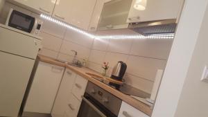 Apartment Greenstar - фото 4