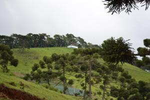 Quinta do Céu, Chalets  Gonçalves - big - 6