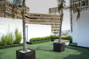 Perfect Location With Roof Garden, Апартаменты  Мехико - big - 35