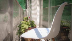 Perfect Location With Roof Garden, Апартаменты  Мехико - big - 93
