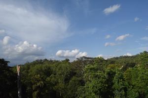 Bee View Home Stay, Magánszállások  Kandy - big - 45