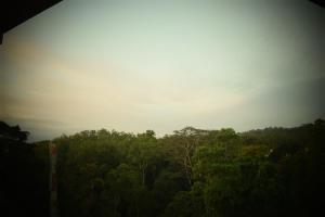 Bee View Home Stay, Alloggi in famiglia  Kandy - big - 44