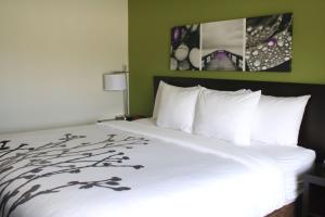 Sleep Inn & Suites Galion, Hotels  Galion - big - 4