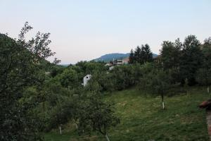 Kuca Dzogovic - фото 22