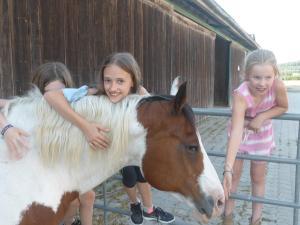 Espi-Stables Ferienhof Esterhammer, Farmházak  Liebenau - big - 45