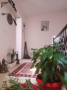 Apartment Mecha - фото 9