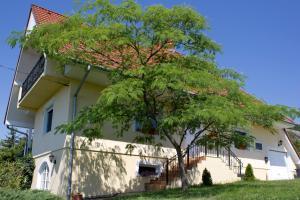 Kenesei Vendégház, Appartamenti  Gyenesdiás - big - 7