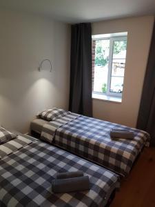 Amber Wind Apartment, Апартаменты  Юодкранте - big - 7