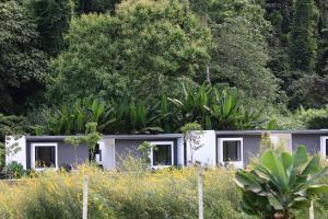 Villa DE View Chiang dao, Lodge  Chiang Dao - big - 15