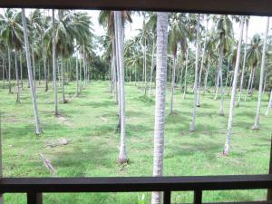 Koh Kood Paradise Beach, Rezorty  Ko Kood - big - 45