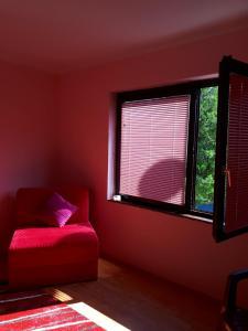 Apartment Iva - фото 7