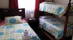 Lomas Del Rio III, Appartamenti  Valdivia - big - 9