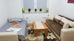 Green Garden Apartment - фото 10