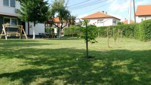 Green Garden Apartment