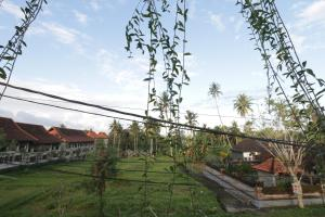 Pondok Iman Spa Ubud, Guest houses  Ubud - big - 21
