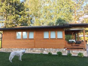 Holiday home Amina - фото 6