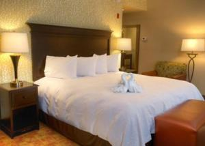 Hampton Inn Pigeon Forge, Hotely  Pigeon Forge - big - 18