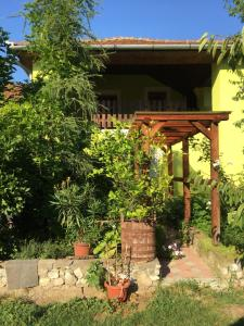 Green and Fresh Guesthouse