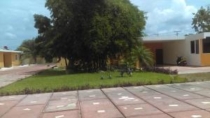 Posada Amistad, Gasthäuser  Mérida - big - 48