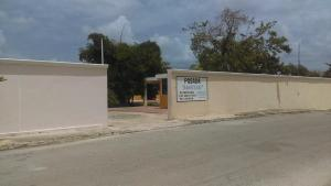 Posada Amistad, Gasthäuser  Mérida - big - 49