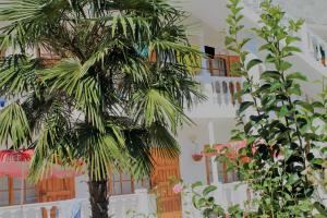 Гостевой дом Лиана, Волконка