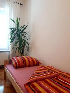Appartment Stari Grad - фото 12