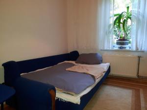 Appartment Stari Grad - фото 7
