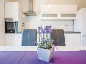 Two-Bedroom Apartment in Sv.Filip i Jakov, Ferienwohnungen  Sveti Filip i Jakov - big - 6