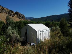Bristol Cabins & Tents, Lodge  Lava Hot Springs - big - 19