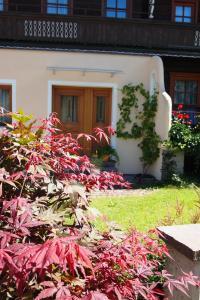 Haus Seiwald, Apartmanok  Niederau - big - 38