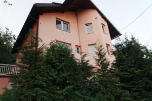 Holiday home Villa Dovbenko