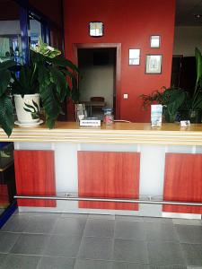 Tanagra Hotel, Hotely  Vilnius - big - 104