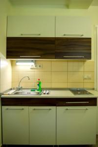 CSONGRÁDI VENDÉGVÁRÓ Apartmanok, Appartamenti  Csongrád - big - 10