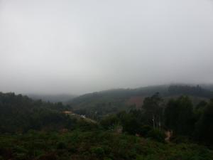 Sitio Canto da Floresta