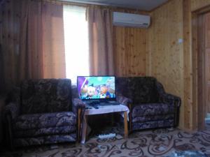 Guest house in Khosta, Penziony  Khosta - big - 12